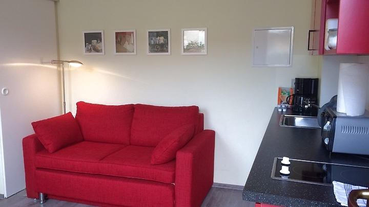 2 room apartment in Leipzig - Stötteritz, furnished